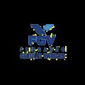 FGV RI