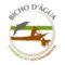 Instituto Bicho Dagua